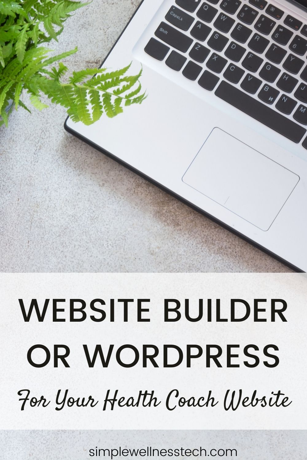 website builder or wordpress